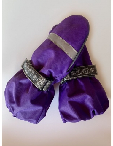 фиолетовая мембрана